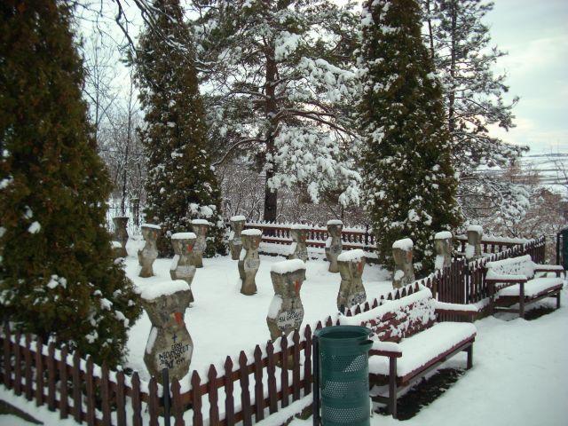 cimitireroi9