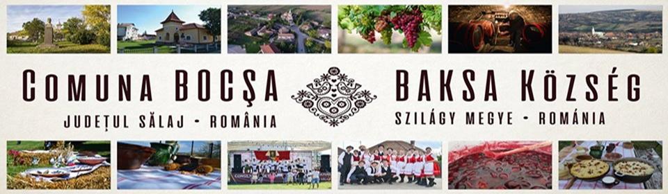 Primaria Comunei Bocsa – Judetul Salaj